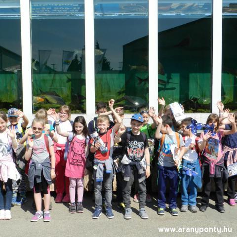 Akvárium a gyerekek kedvence!